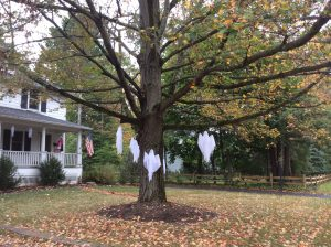 Ghosts hanging from tree in chagrin falls